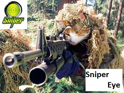 Sniper_Cat3