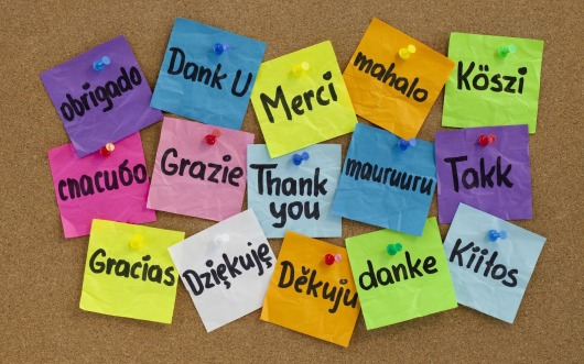 thank%20you%20languages